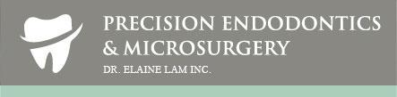 precision-logo_03