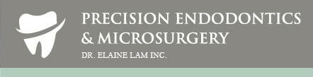 Precision Endodontics Microsurgery